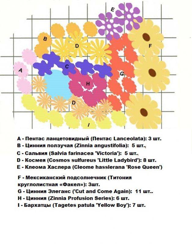 схема цветника для бабочек